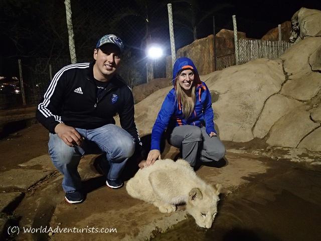 lionpark4