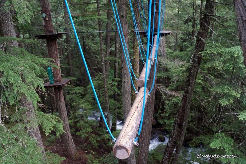 treetops10