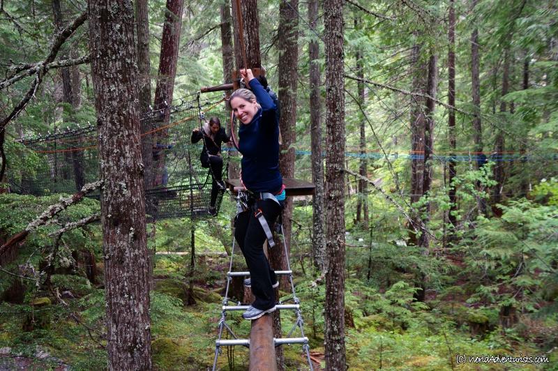 treetops2