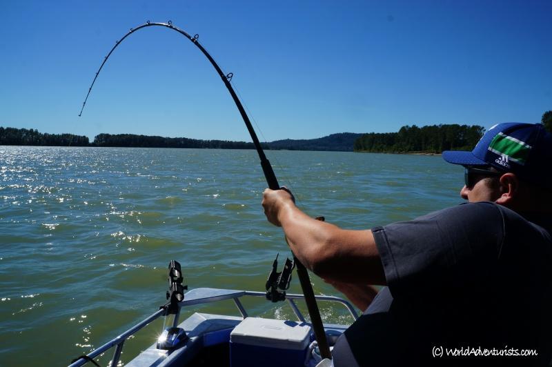 sturgeonfishing11_2017