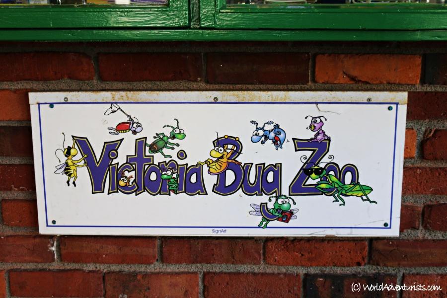 victoriabugzoo1