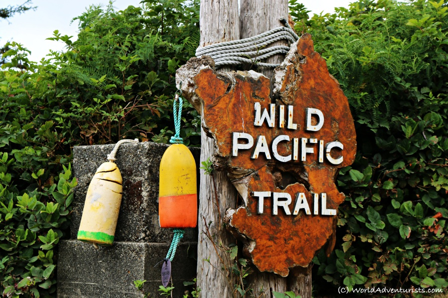wildpacifictrail8