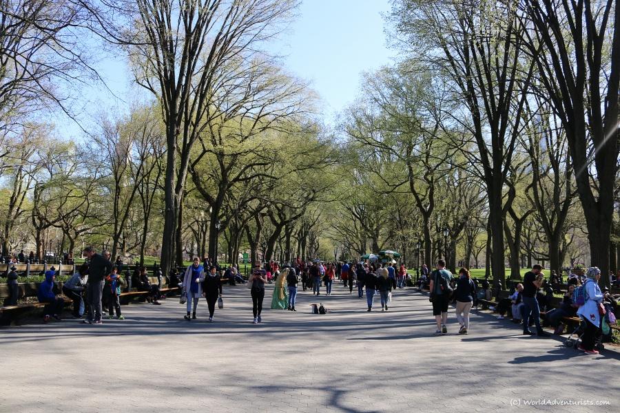 centralpark018