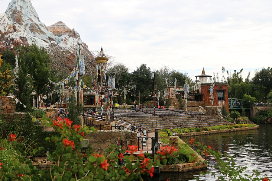 animalkingdom29