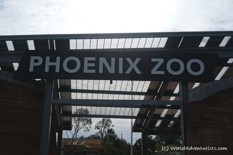 phoenixzoo1