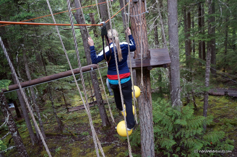 treetops9