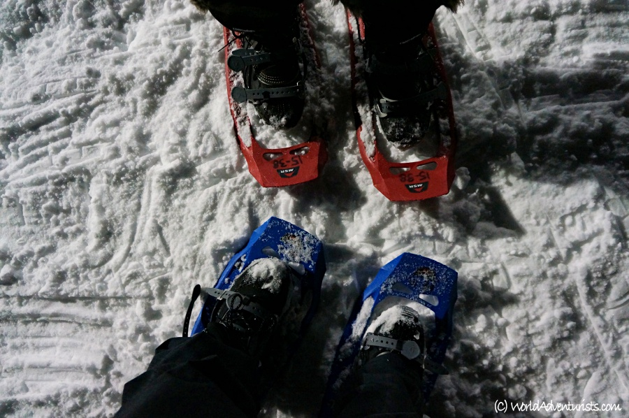 Staycation ideas - snowshoeing