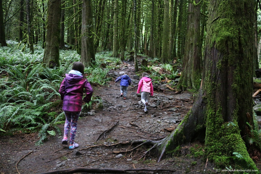 Kids hiking the trail to Flood Falls in Hope, BC