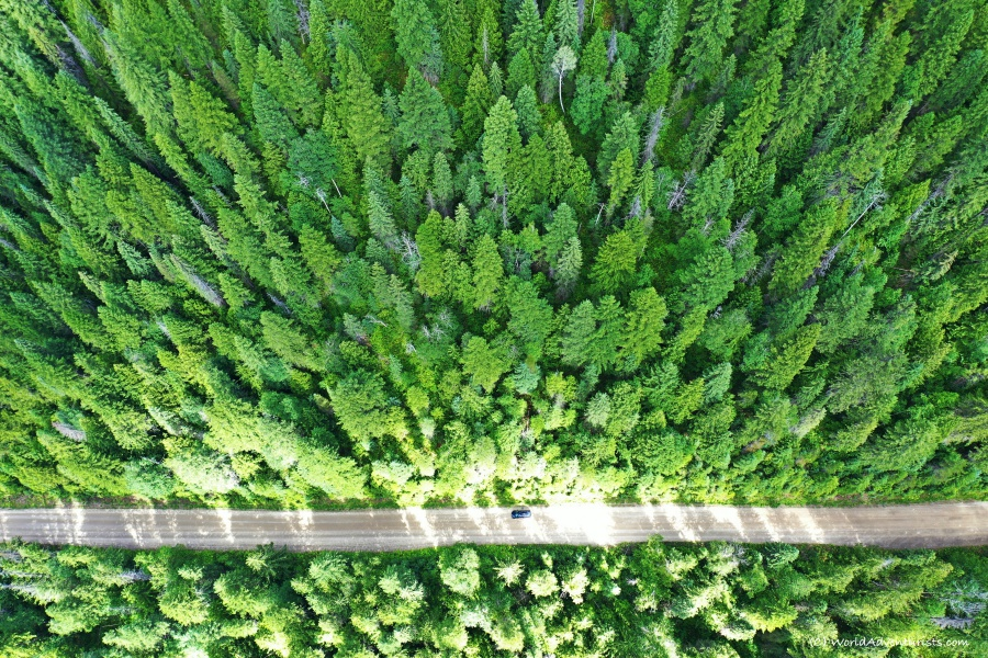 An aerial view of a dirt road at Wells Gray Provincial park