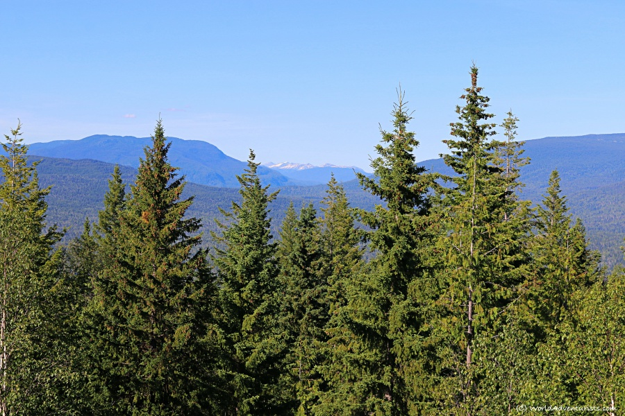 Views from Green Mountain Lookout at Wells Gray Provincial park