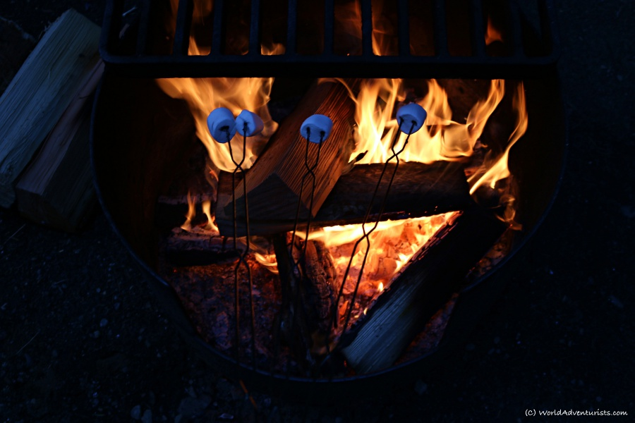 Roasting marshmallows over a campfire at Wells Gray Provincial park