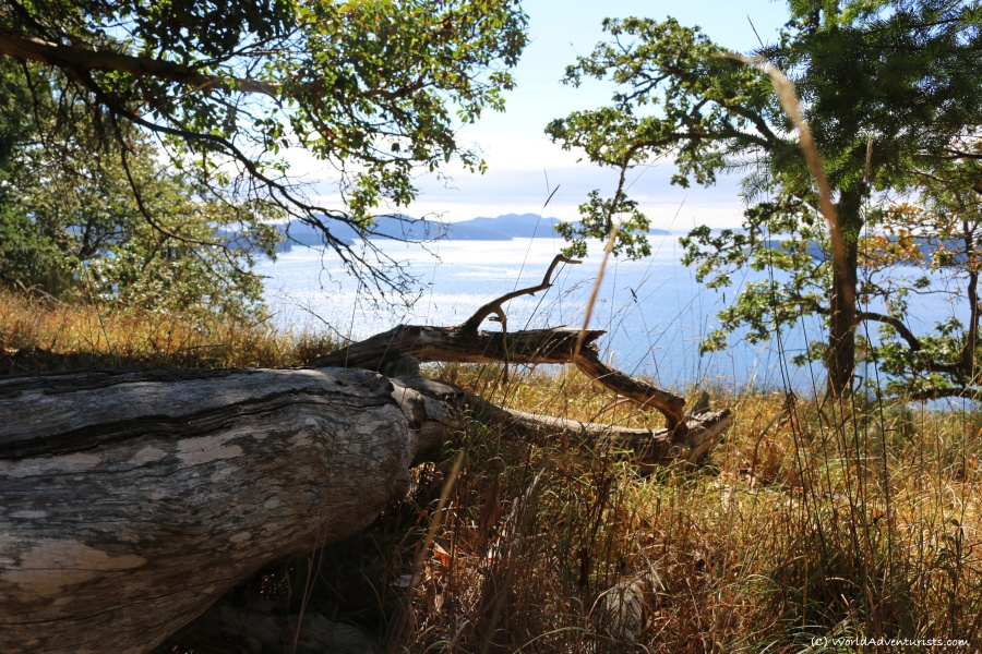 Viewpoint at Collinson Point on Galiano Island