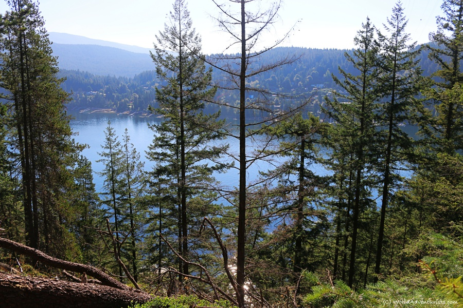 Views along the Hiking trail to Jug Island In Belcarra Regional Park