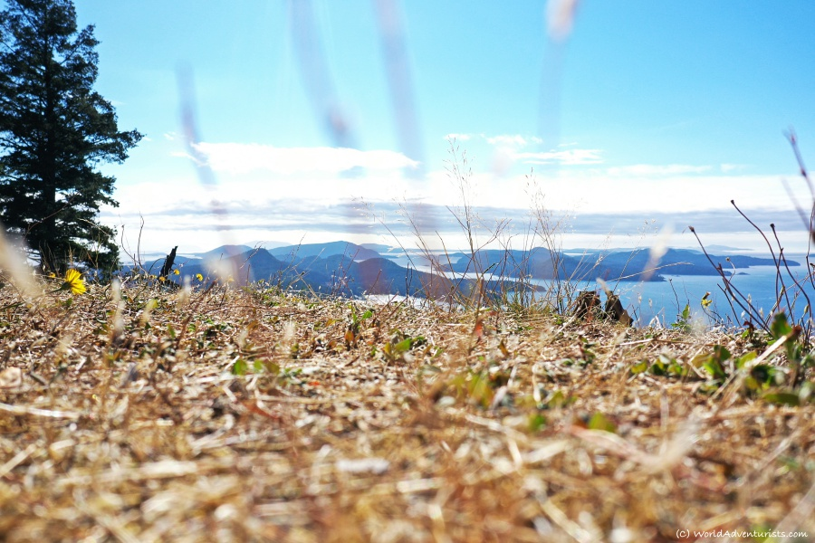 Sitting in the golden grass enjoying the view of the southern gulf islands