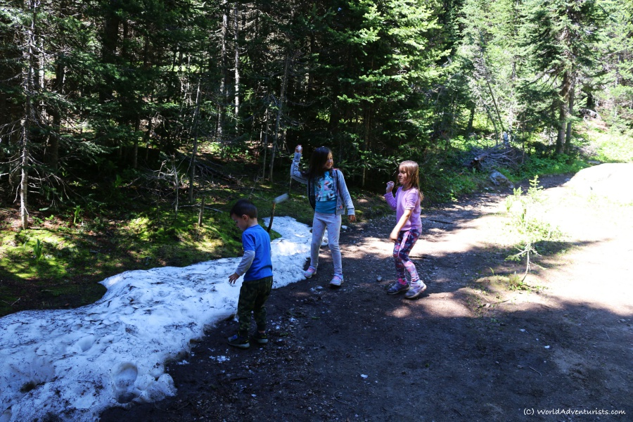 Kid's summer snowball fight hiking Trophy Mountain Trail in Wells Gray Provincial Park