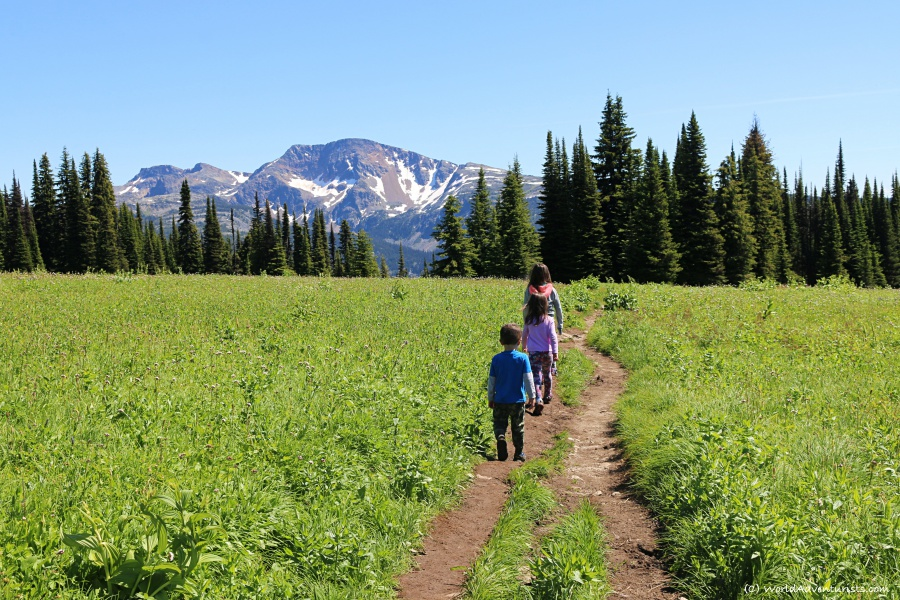 Kids hiking Trophy Mountain Trail in Wells Gray Provincial Park