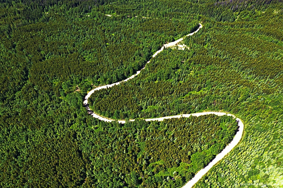 Aerial view of road up to Trophy Mountain Trailhead