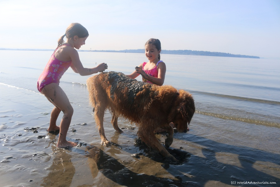 Girls playing with Golden Retriever on the beach