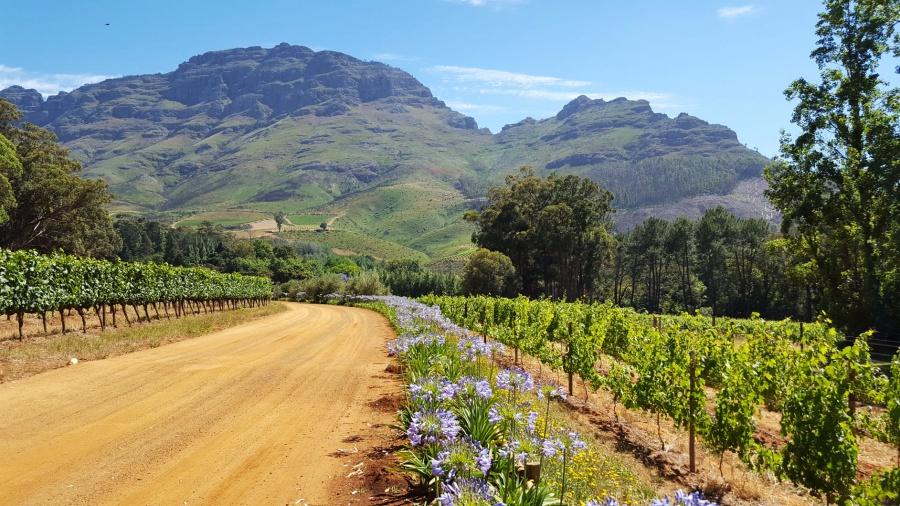Favourite travel destinations - South Africa