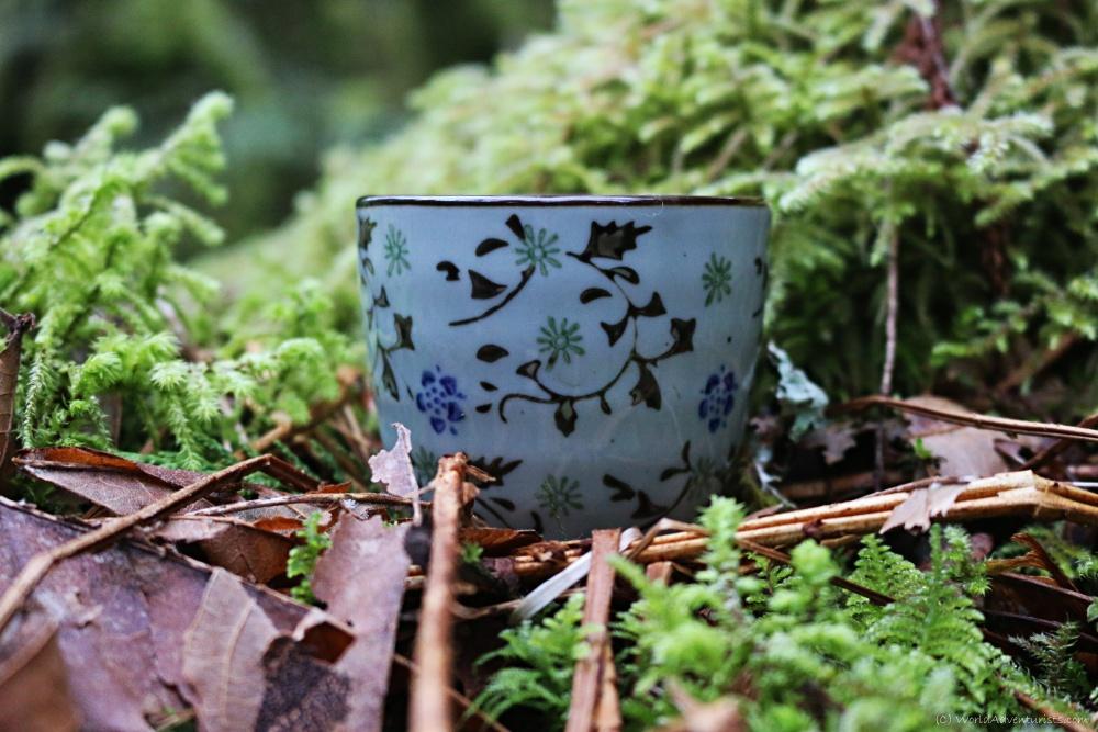 Teapot Hill Chilliwack BC